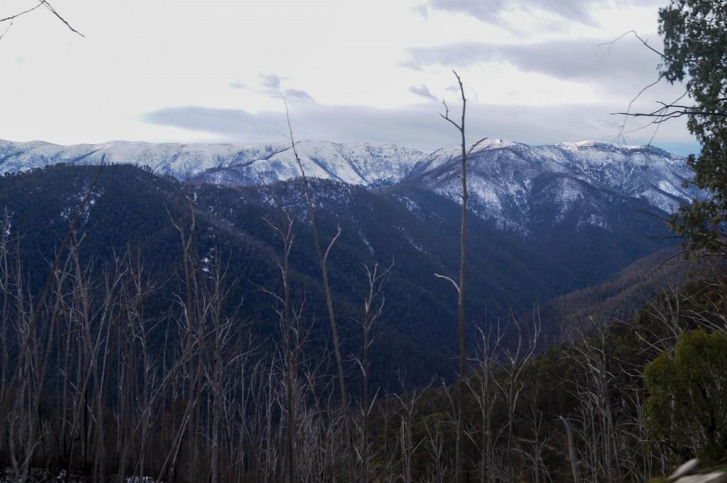 Mount Hotham 2