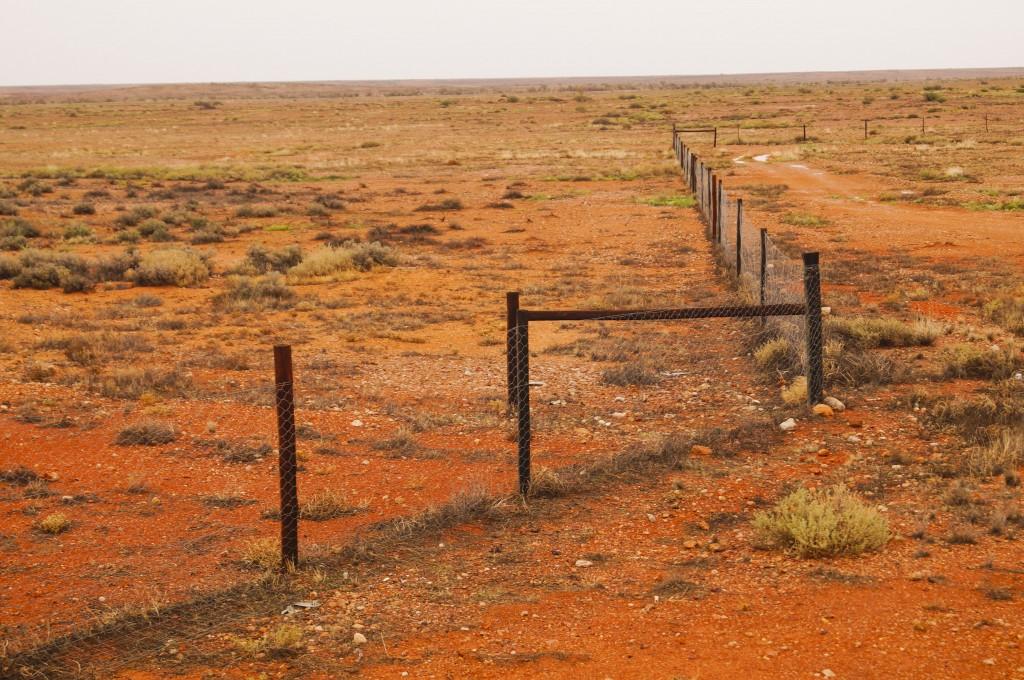 Rural Australia; Australian Outback Fence