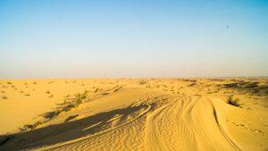 Dubai Desert Safari Camels & Dunes
