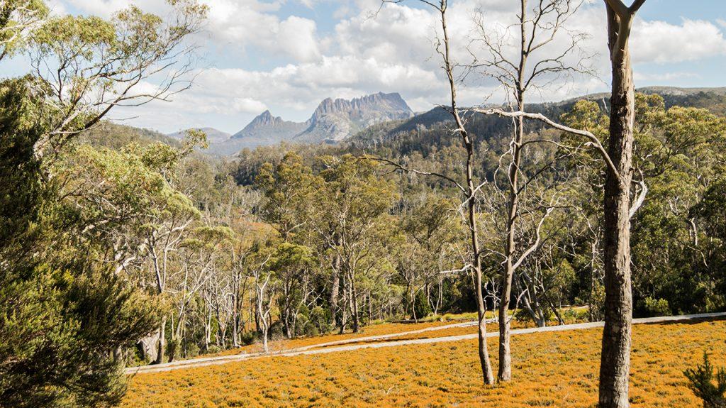 Cradle Mountain Walking Track