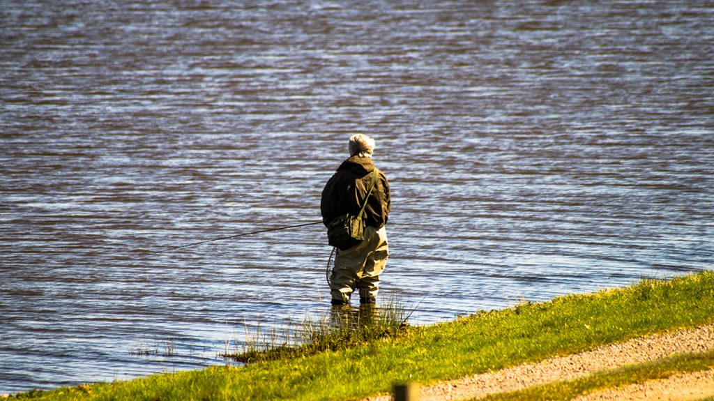 Trout Fly Fishing Blithfield Reservoir