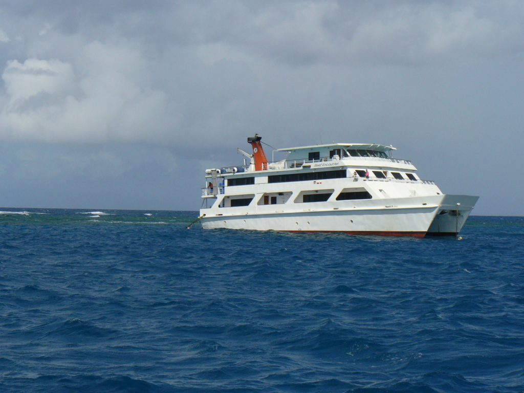 Photo courtesy of TripNotice, a Diving Cruise from Cairns