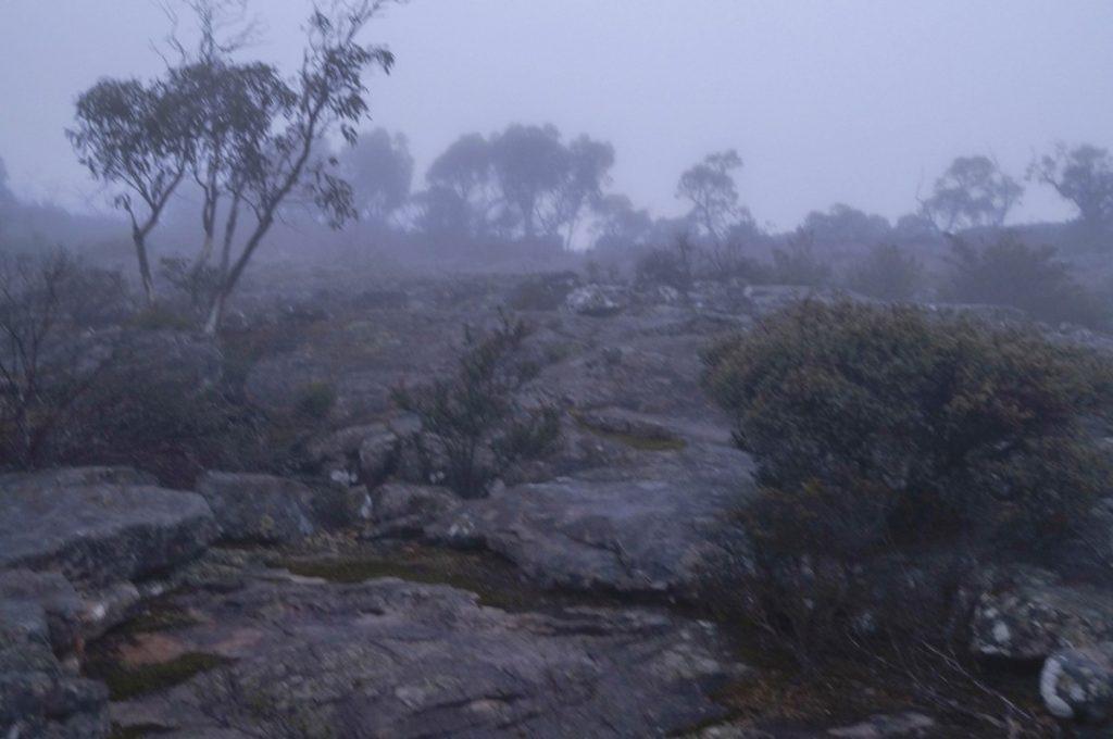 Low visibility picture edited to maximum exposure