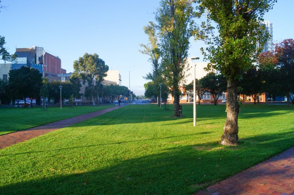 Adelaide City greenery