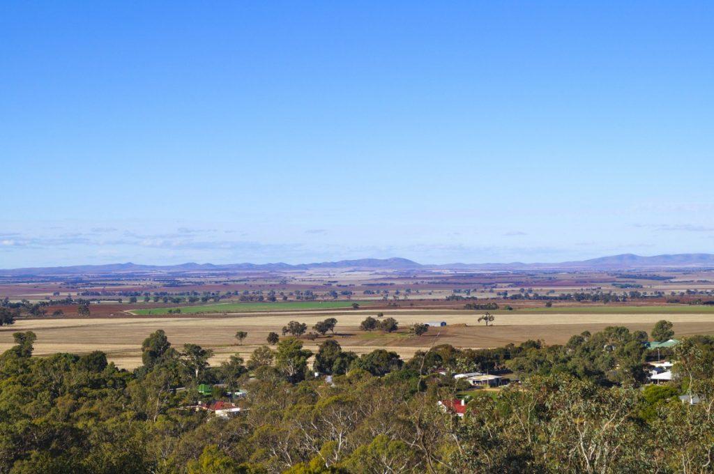 View across Barossa Valley