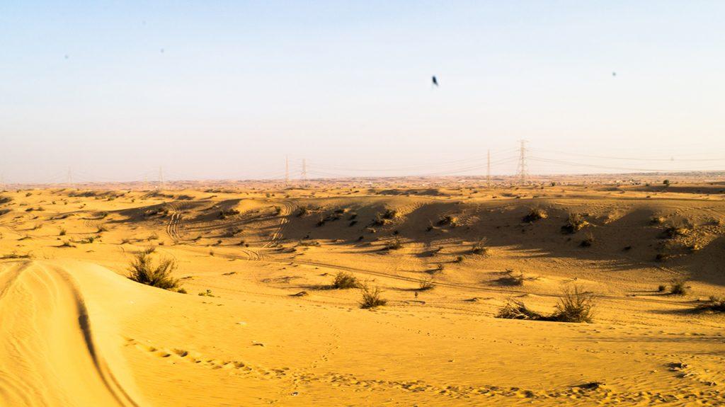 Desert near Dubai