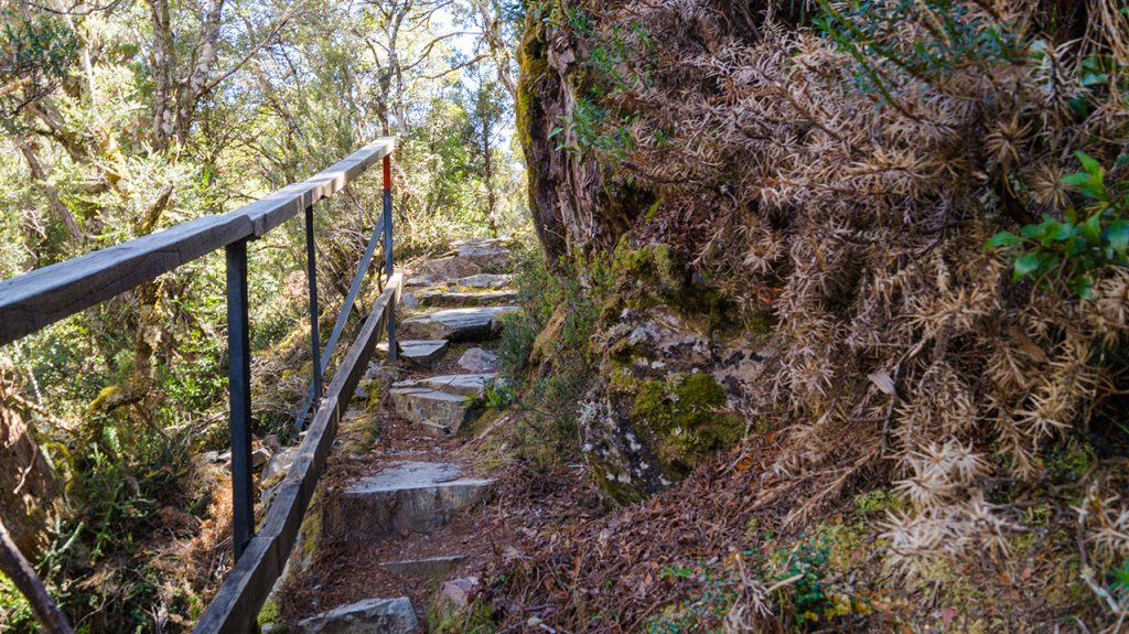 Narrow Path on Cradle Mountain