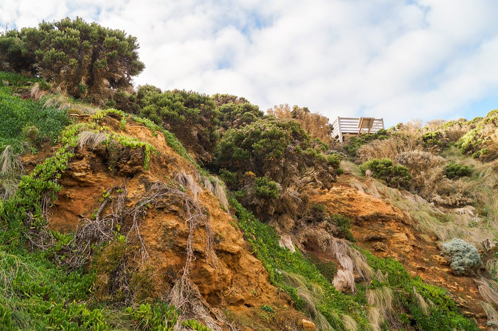 Cliff at bay of islands