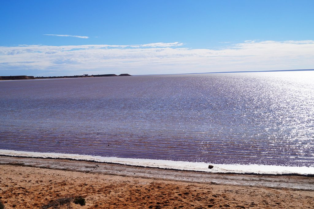 Salt Flats near the Ghan Railway