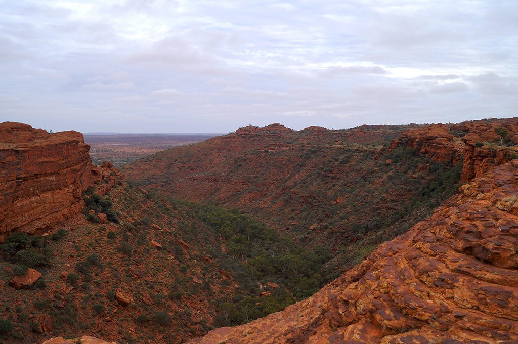 View from the Rim of Kings Canyon Australia