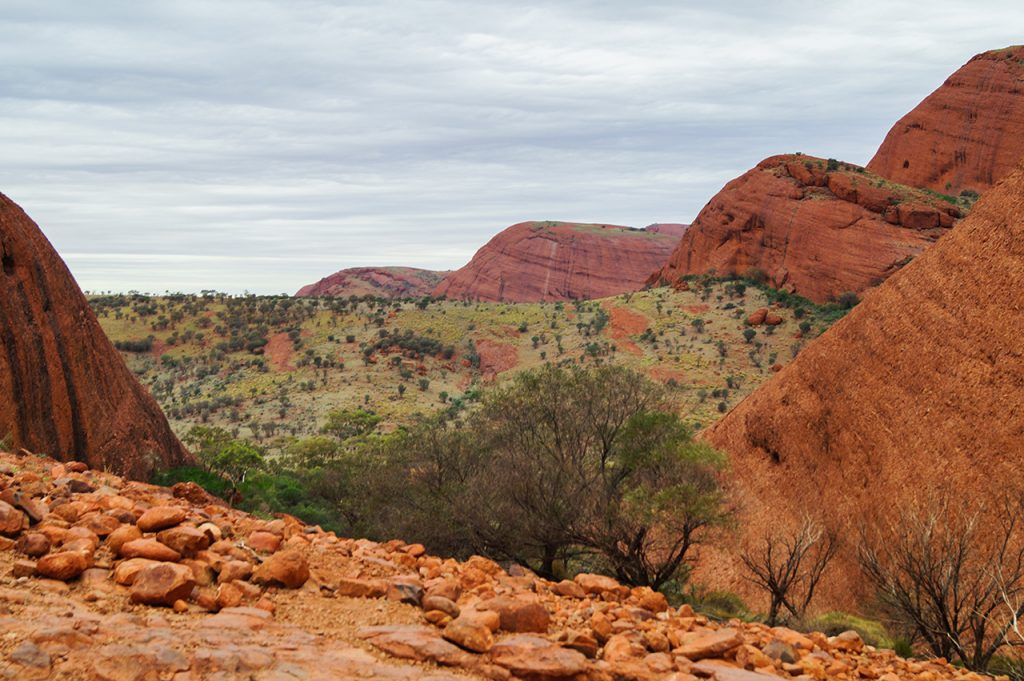 View across Kata Tjuta