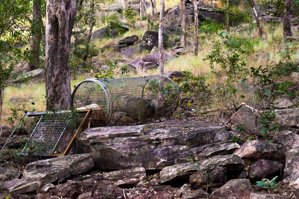 Crocodile Trap in Kakadu National Park