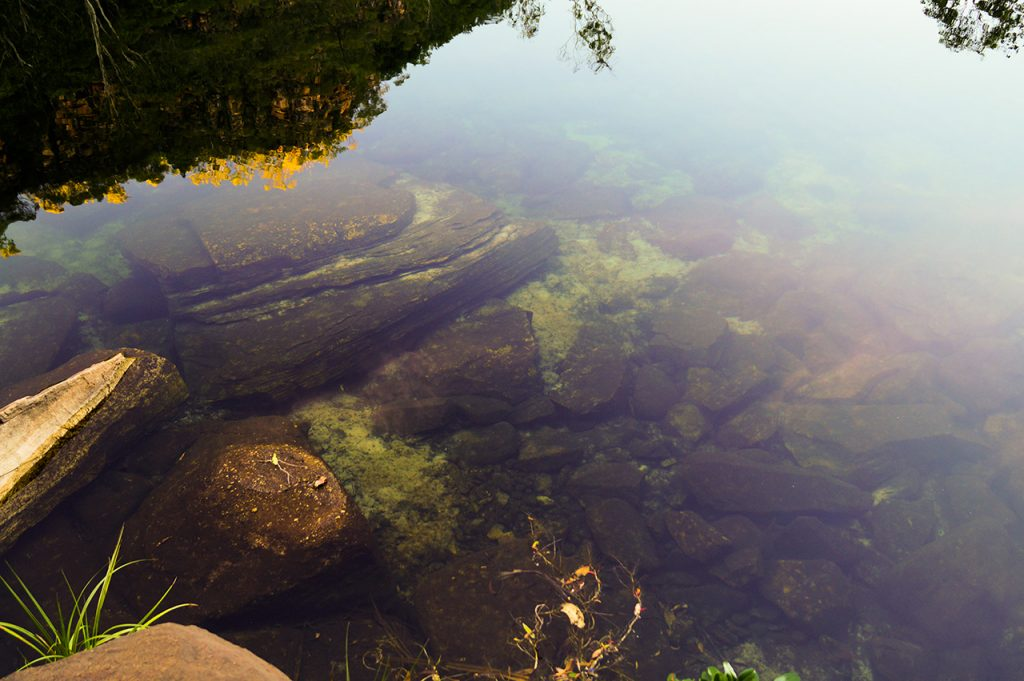 Crystal Clear Water Kakadu National Park