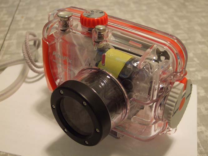 Image courtesy of J M - an Underwater Camera Housing