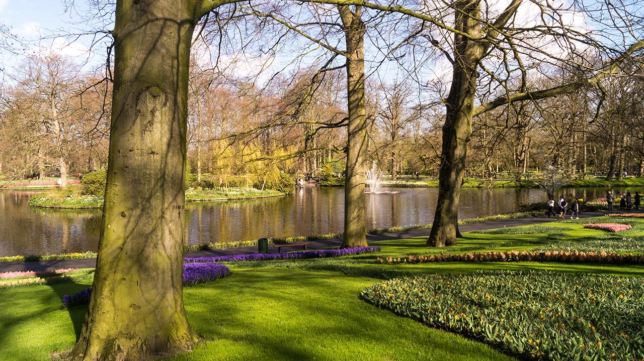 Holland\'s Tulip Season at Keukenhof Gardens | Macrodyl