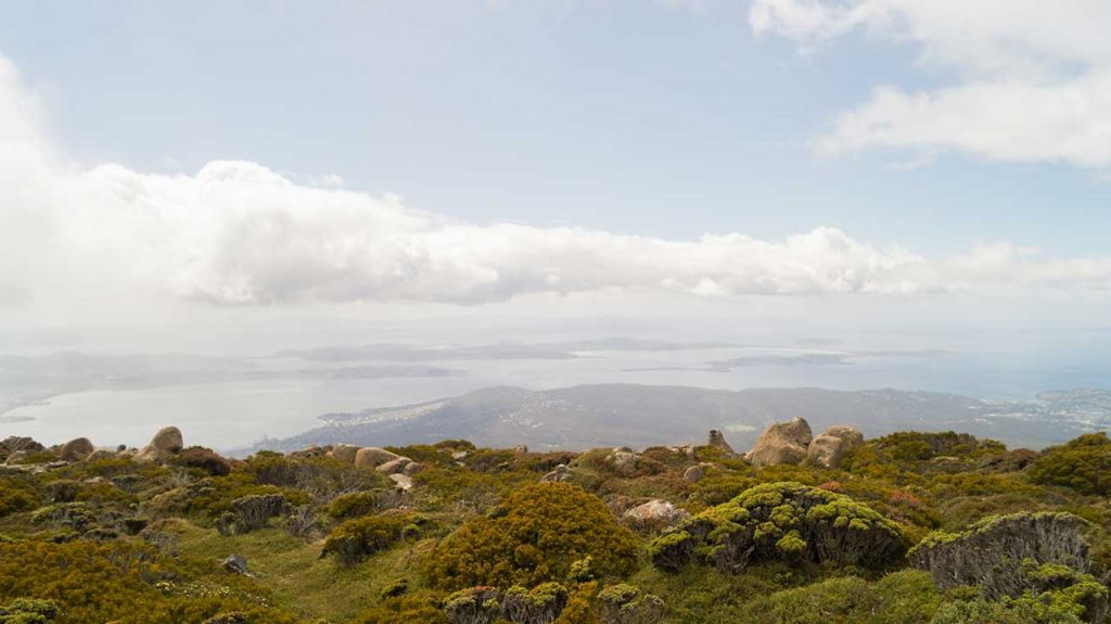 View at the top of Mount Wellington