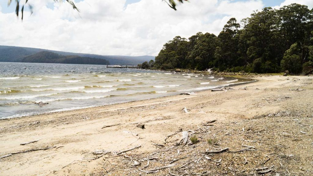 Beach at Lake St Clair Tasmania