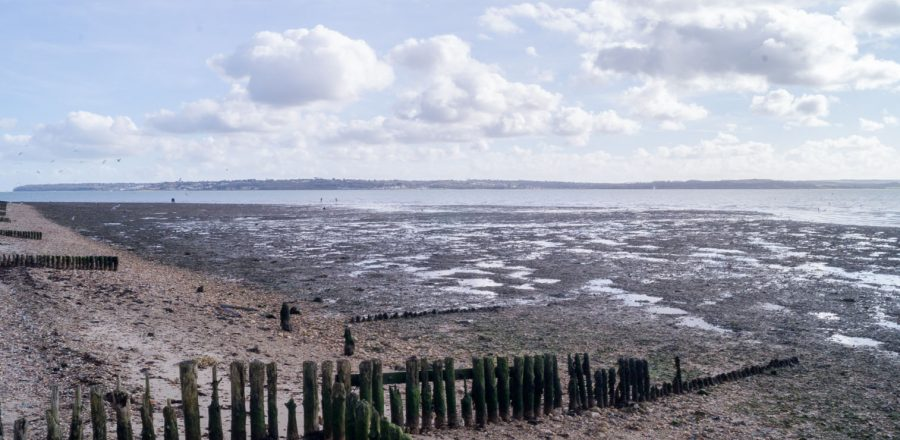 D-Day at Lepe