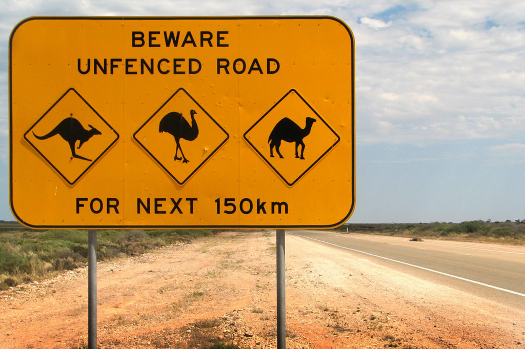 Australian animal warning sign