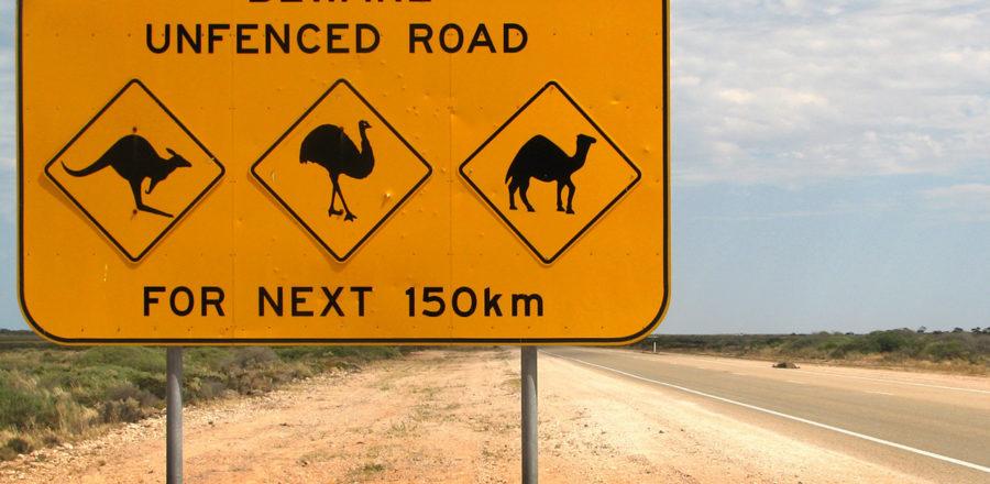 Kangaroo Road Signs: Weightlifting?